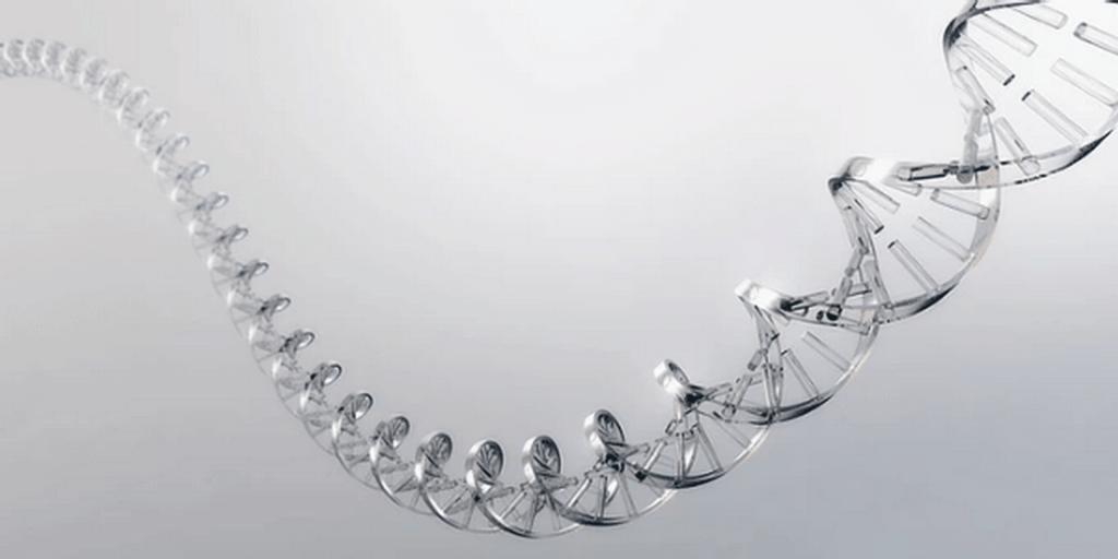 epigenetique-redecouvrons-la-magie-du-moment-present